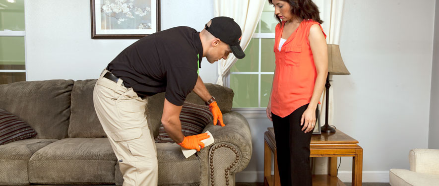 Strongsville, OH carpet upholstery cleaning